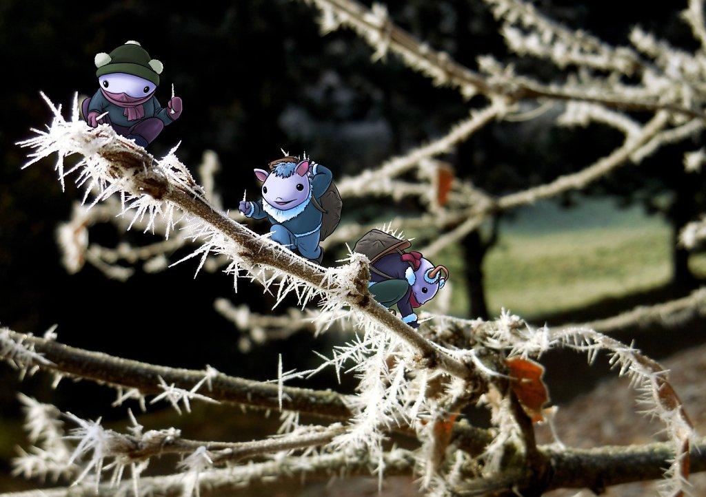 IceGnomes.JPG